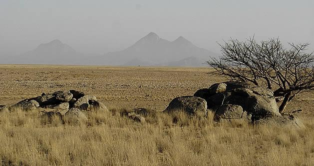 angola safari