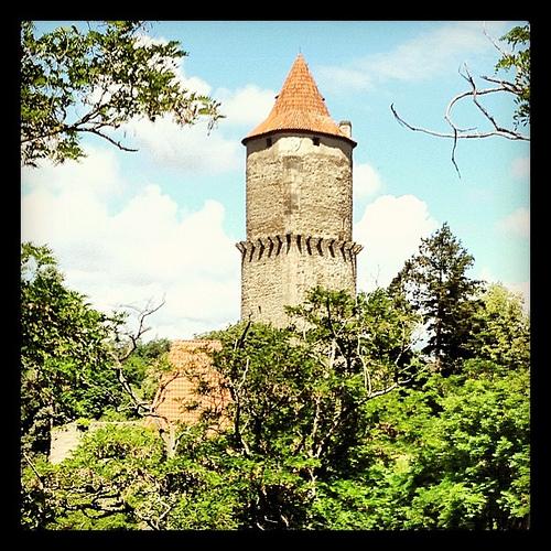Zvikov Castle photo